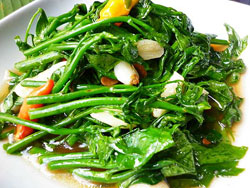 sweet-leaves-oyster-sauce